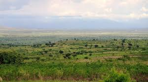 Sud Kivu : un mort de plus dans la plaine de la ruzizi