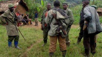 Photo of Kalehe : Deux coupeurs des routes tués, deux armes, ainsi qu'une importante somme d'argent récupéré par les FARDC